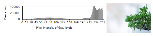 Fig 2: Image histogram for a bright image