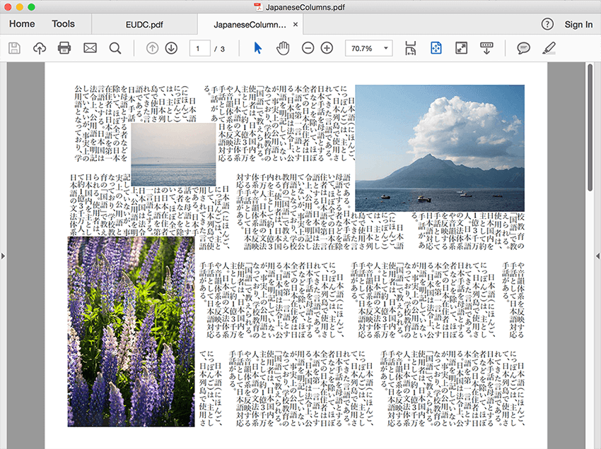Japanese columns and font support