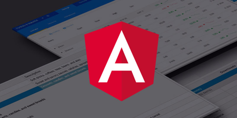 Build a Customizable Angular Data Grid in Minutes | Wijmo