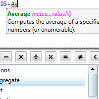 .NET Expression Editor See the details of a function with ToolTip Helper
