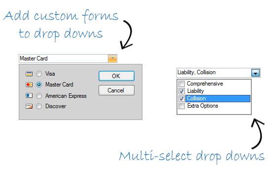 WinForms DropDown
