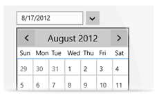 C1DatePicker